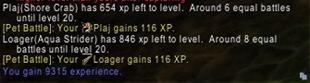 wow addon Battle Pet XP To Level