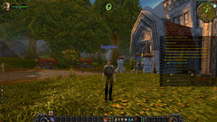 wow addon Guidelime_Sage   Alliance 1-60 All Classes   Dungeons   Raids