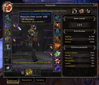 wow addon Kibs Item Level (continued)