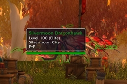 wow addon Mouse Tooltip