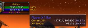Player XP Bar
